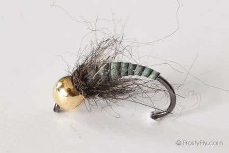 Tungsten Peacock Quill Caddis Nymph - Gray