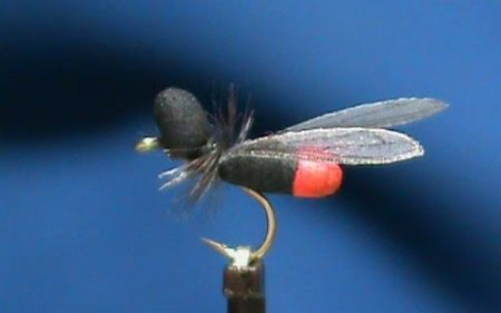 FrostyFly Flying Ant