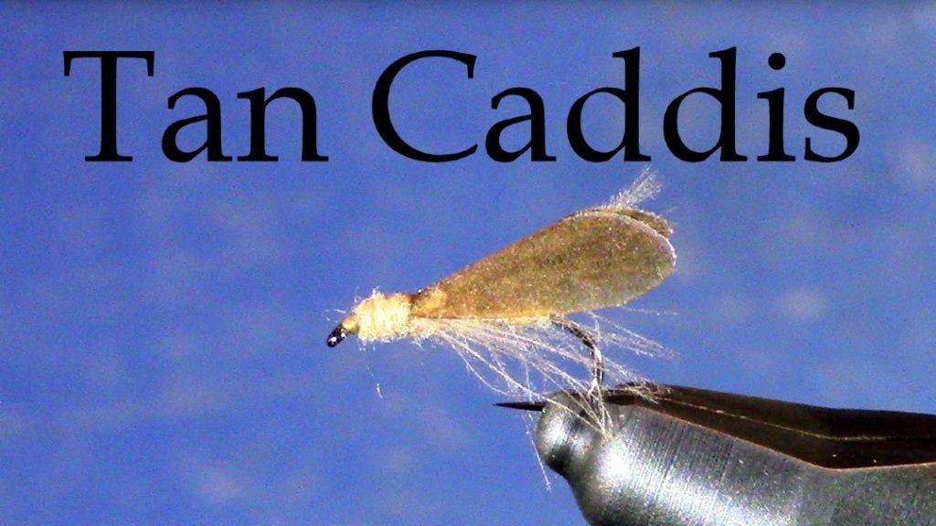 Tan Caddis by Tim Cammisa
