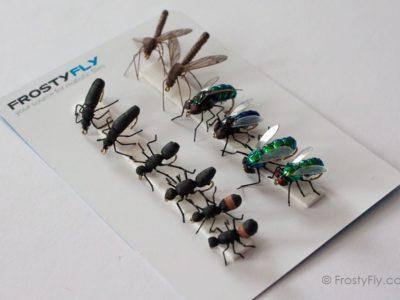 Realistic Flies - Terrestrials - Set of 12 Flies