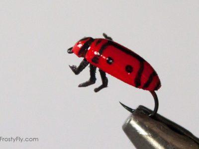 Realistic Firebug Fly