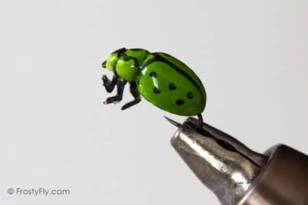 Realistic Green Ladybug Fly