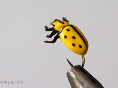 Realistic Yellow Ladybug Fly