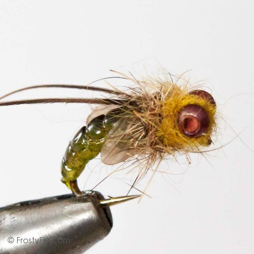 Realistic Caddis Emerger - Light Green