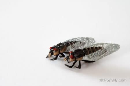 Realistic Cicada Flies - Tan