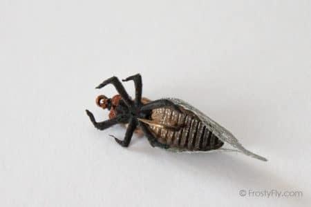 Realistic Cicada Fly - Tan