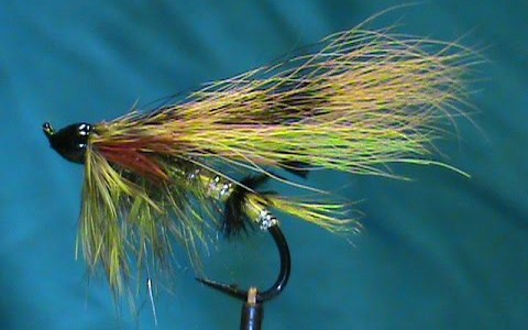 Jim Misiura's Green Highlander Variation Salmon Fly