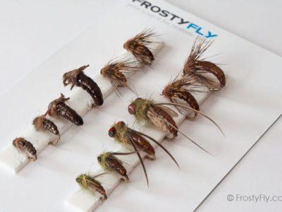 Realistic Flies - Caddis Larvae Pupa Emerger - Set of 12 Flies - Brown