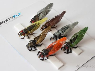 Realistic Flies - Cicadas - Set of 7 Flies