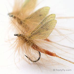 Mayfly Dry Pattern