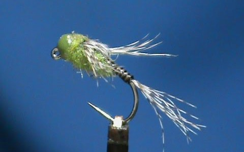 Jim Misiura's Olive Quill Jig Head Nymph