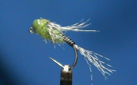 Olive Quill Jig Head Nymph