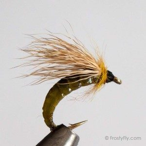 Caddis Pupa Pattern