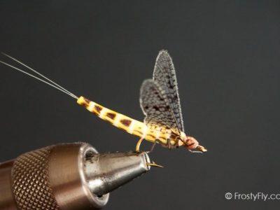 Realistic Mayfly Dry - Ephemera Danica