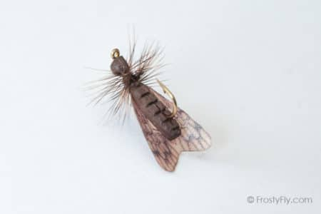 Realistic Caddis Fly Dry II - Dark