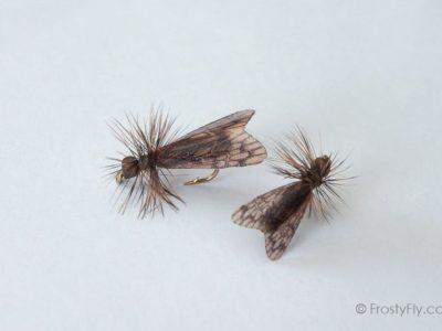 Realistic Caddis Fly Dry II - Dark