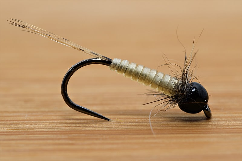 Tying the Micro Nymph with Catgut - Final Fly - Dry