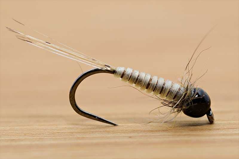 Tying the Micro Nymph with Catgut - Final Fly - with Brown Underbody Thread