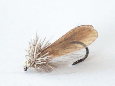 Caddis Dry Pattern