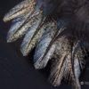 Coq de Leon Colgaderas Feathers - Corzuno Medio
