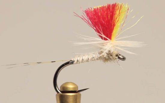 Indicator Mayfly (1)