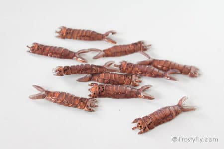 Realistic Hellgrammite Backs - Brown - 10 pieces