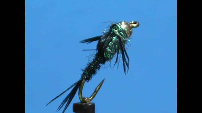 GSS Peacock Pheasant Tail