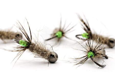 Green Peeping Caddis Jig Nymph