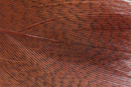 Mallard Barred Feathers - Brown