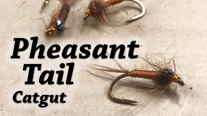 Pheasant Tail Catgut Nymph