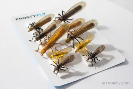 Realistic Flies - STONEFLY II Selection of 10 Flies - Assorted