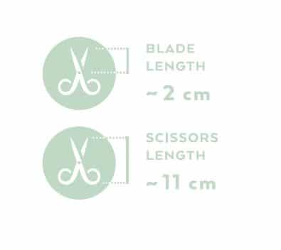 Renomed FS3 Medium Straight Scissors 11cm