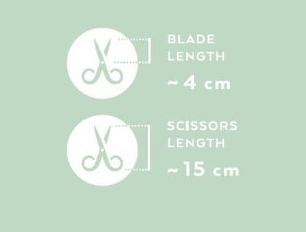 Renomed FS8 SuperCut Large Scissors 15cm