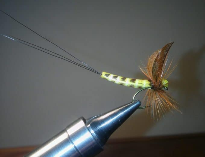 Brown Drake Dun with Realistic Mayfly Bodies by Brad Chinn