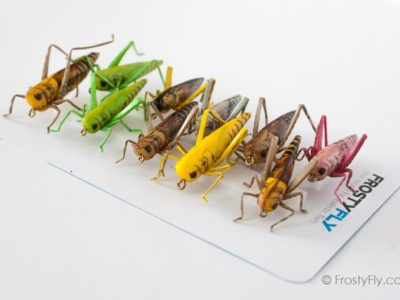 Realistic Flies - HOPPER Selection of 10 Flies - Assorted