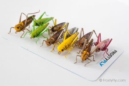 Realistic Flies - HOPPER Selection of 10 Flies - Assorted