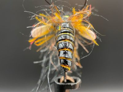Shane Schuster's Caddis Pupa tied with Virtual Nymph Skin