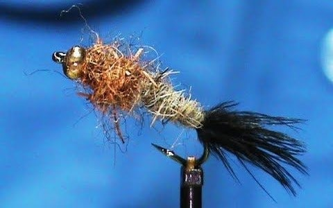 Bottom Scratcher Nymph Pattern by Jim Misiura