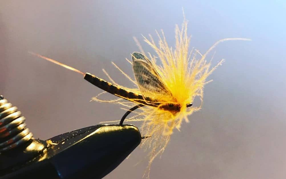 Fly Ting Brown Drake - Tied by Steven Craig