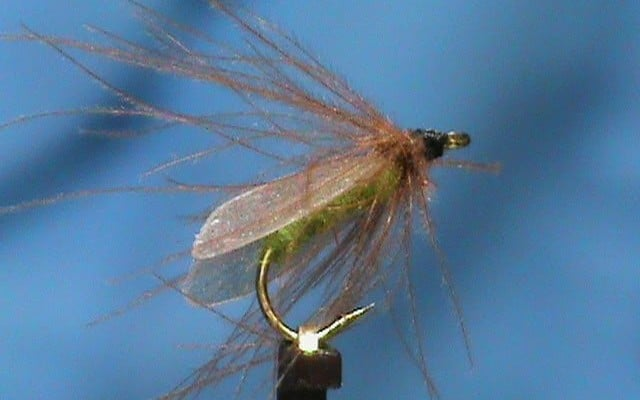 Hemingway's Caddis Flymph tied by Jim Misiura