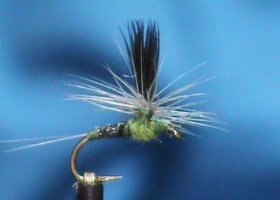 Magic Quill Blue Wing Olive Parachute tied by Jim Misiura