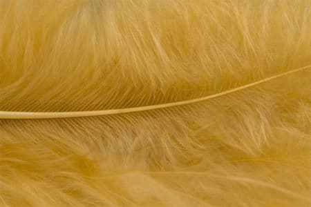 Marabou Feathers - Hand-Selected - Beige