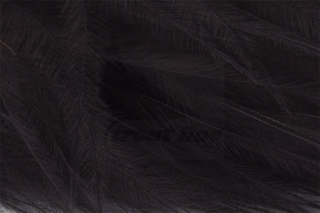 Marabou Feathers - Hand-Selected - Black