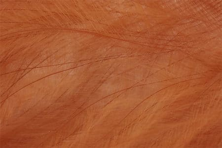 Marabou Feathers - Hand-Selected - Dark Cinnamon