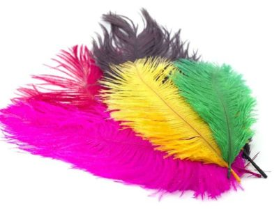 Fly Tying Ostrich Feathers 10-12 inch