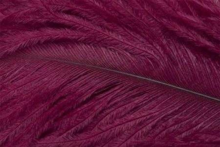 Fly Tying Ostrich Feathers 10-12 inch - Rusty Red