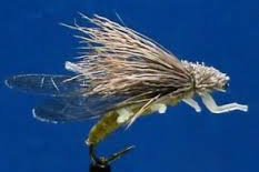 Golden Stonefly Fly Tying Video by Jim Misiura