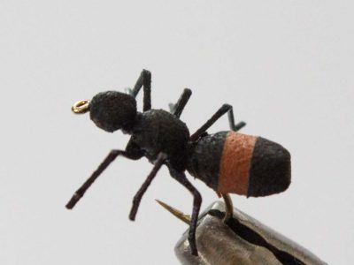 Realistic Ant Fly - Cinnamon
