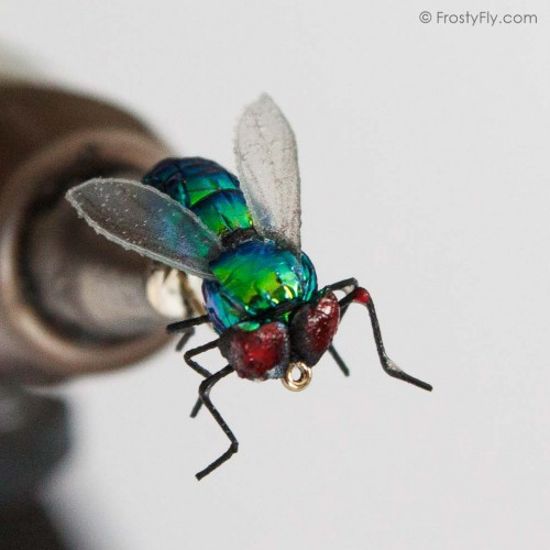 Realistic Green Bottle Fly