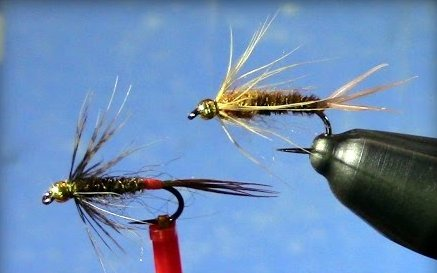 Soft Hackle Pheasant Tail by Tim Cammisa